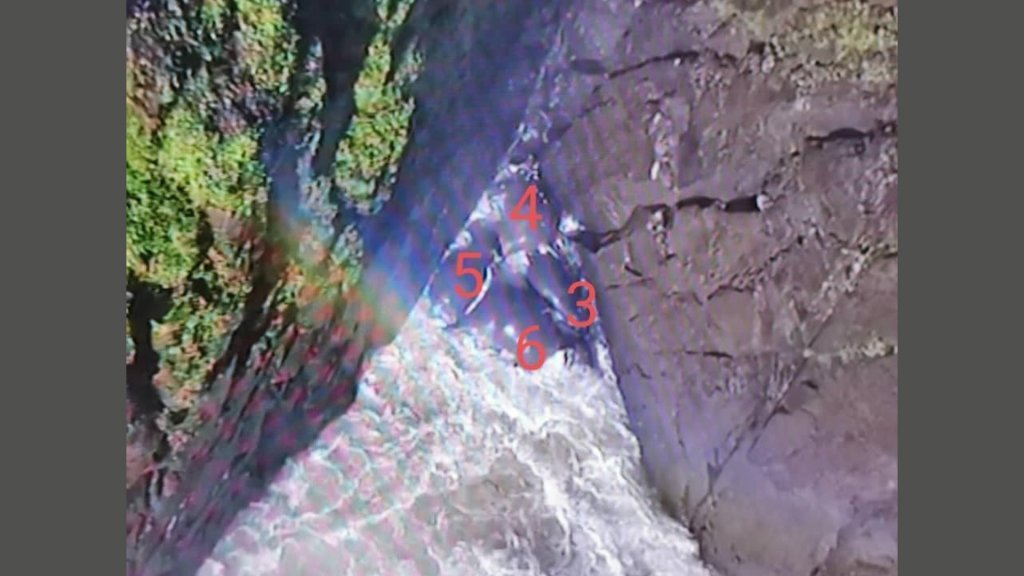 Nog een fotostill van drone met verdronken olifanten