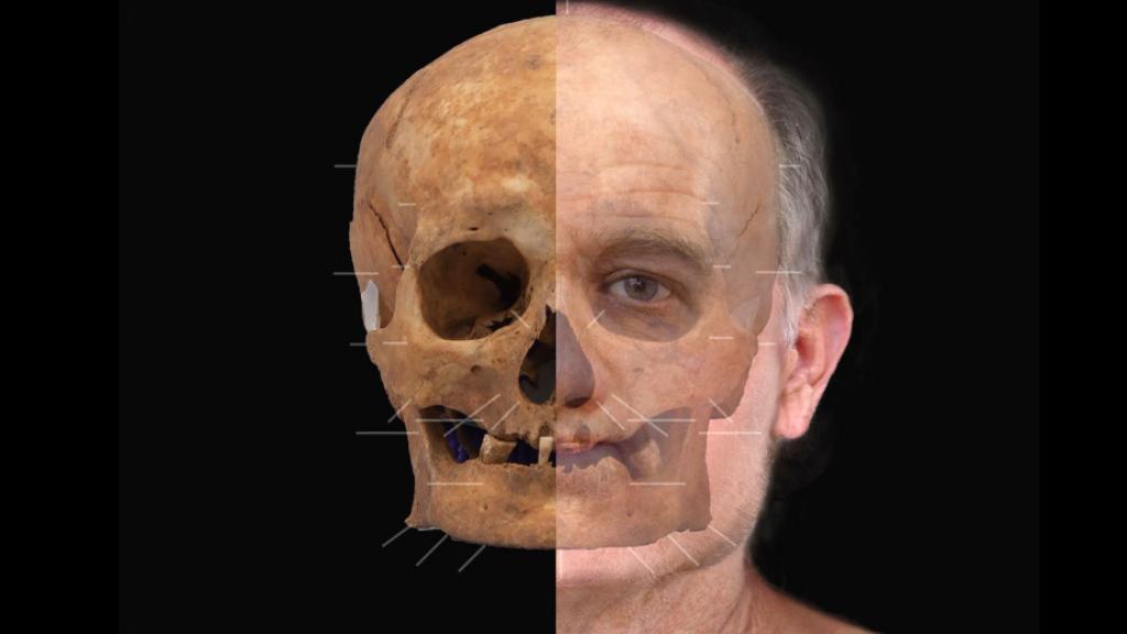 De schedel en het mogelijke gezicht.