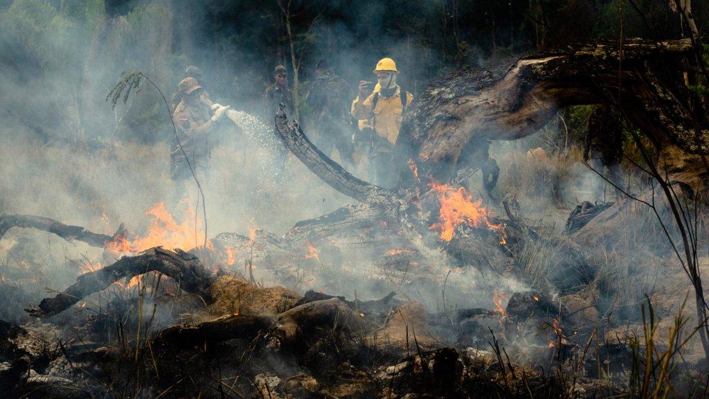 Er waren deze zomer veel meer branden in het Amazonegebied.