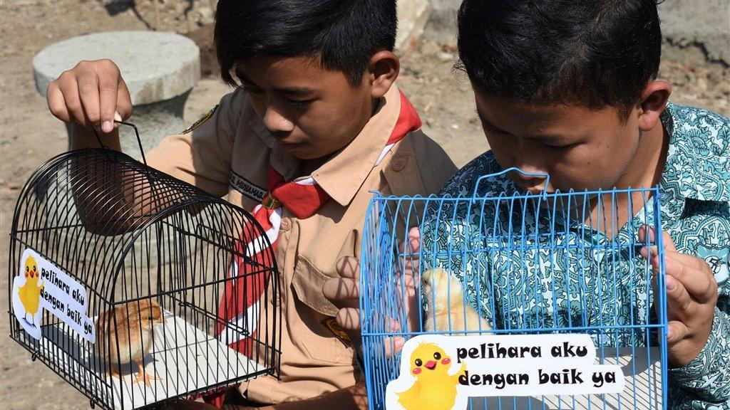 dating site in Indonesië Cat5 naar telefoonaansluiting