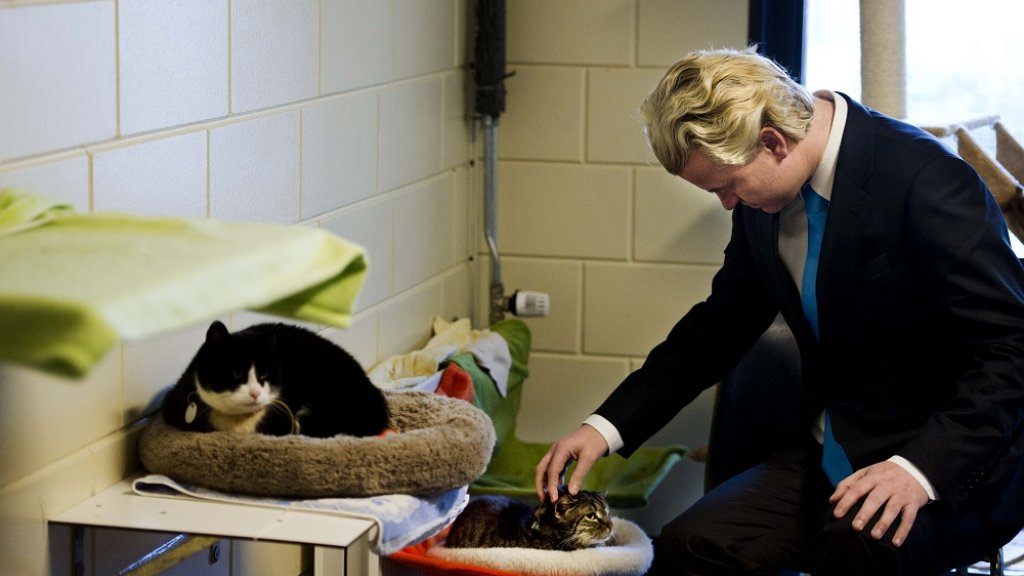 De katten van Wilders hebben zelfs een Twitter-account.