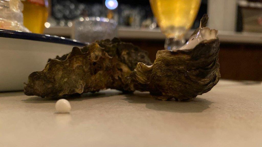 De parel en de oester.