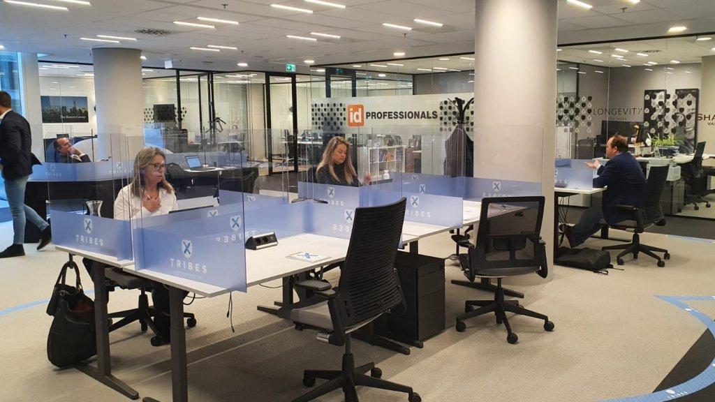 Het vernieuwde kantoor van Tribes