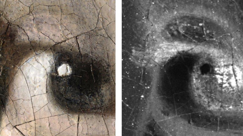 Onder de microscoop werden kleine haartjes rond beide ogen waargenomen.