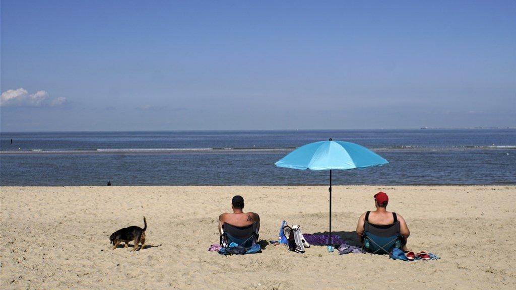 Badgasten aan de Zeeuwse kust.