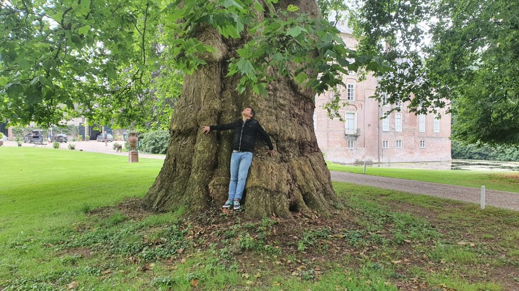 Verslaggever Steef van Stiphout bij een van de dikste bomen (8,75 meter) in Laag-Keppel.