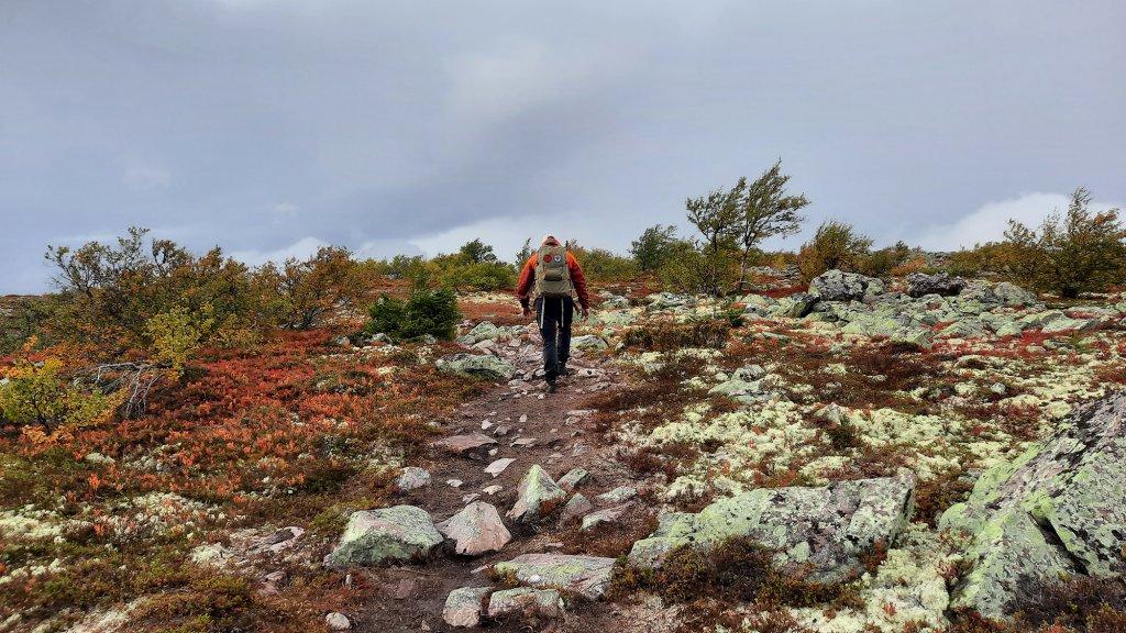 Dennis Daselaar in de Zweedse natuur.