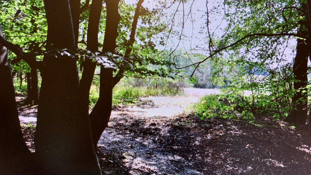 Een shot van de video die is gemaakt vanaf de plek waar Jos B. zegt te hebben gestaan toen hij 'iets' zag.