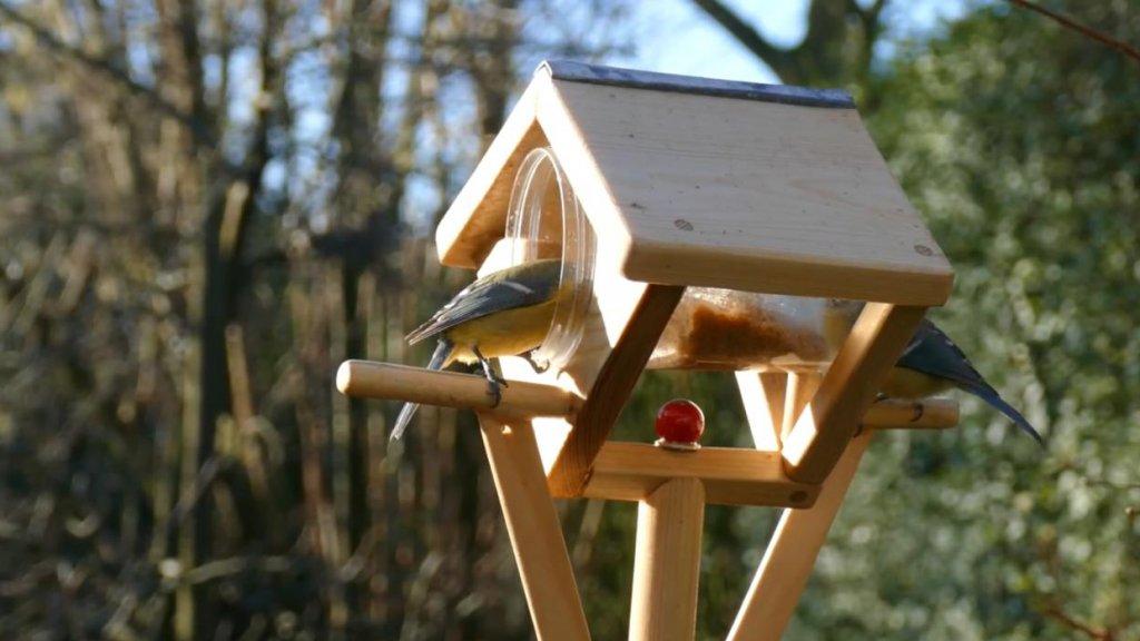 Kleine vogels blijven wel op het stokje zitten