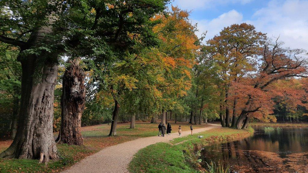 Het boswachterspad in Baarn.