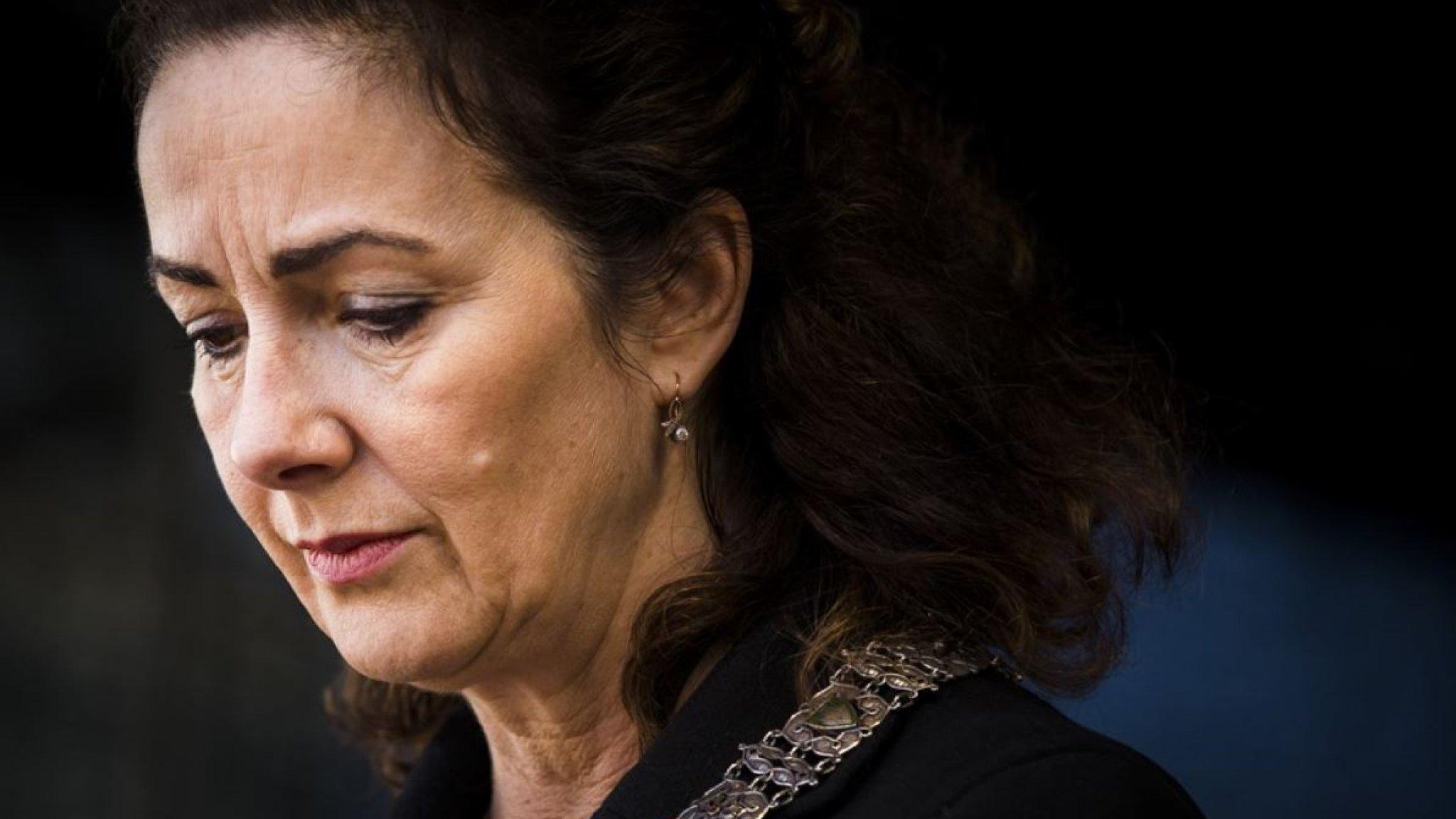 Femke Halsema in brief: 'Mijn zoon heeft geen gewapende inbraak gepleegd'