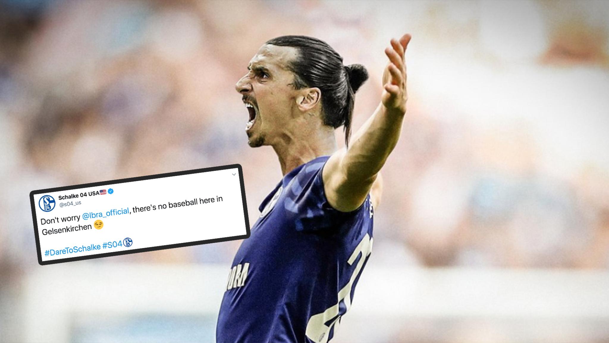 Ibrahimovic Schalke