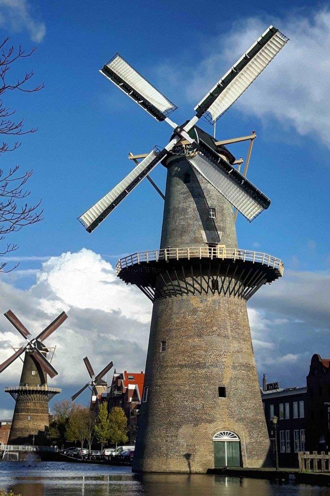 Molen De Vrijheid in Schiedam.