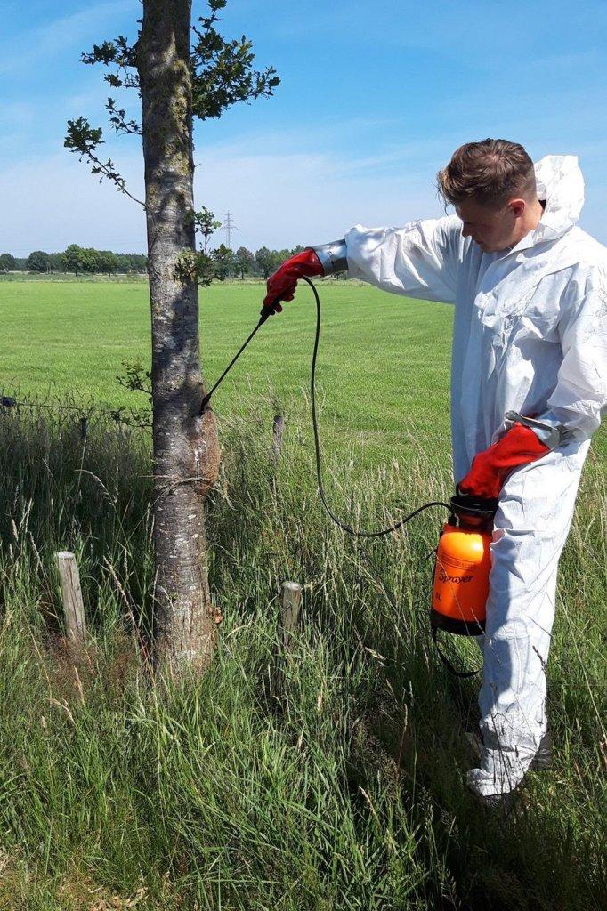 Van Reel verwijdert een van de vele nesten.
